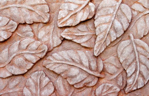 bajorelieve-hojas