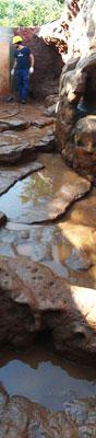 selva-viva-acuario1-txtarte