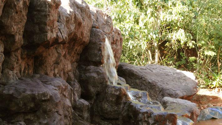 selva-viva-cascada1-txtarte