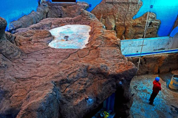 acuario sevilla