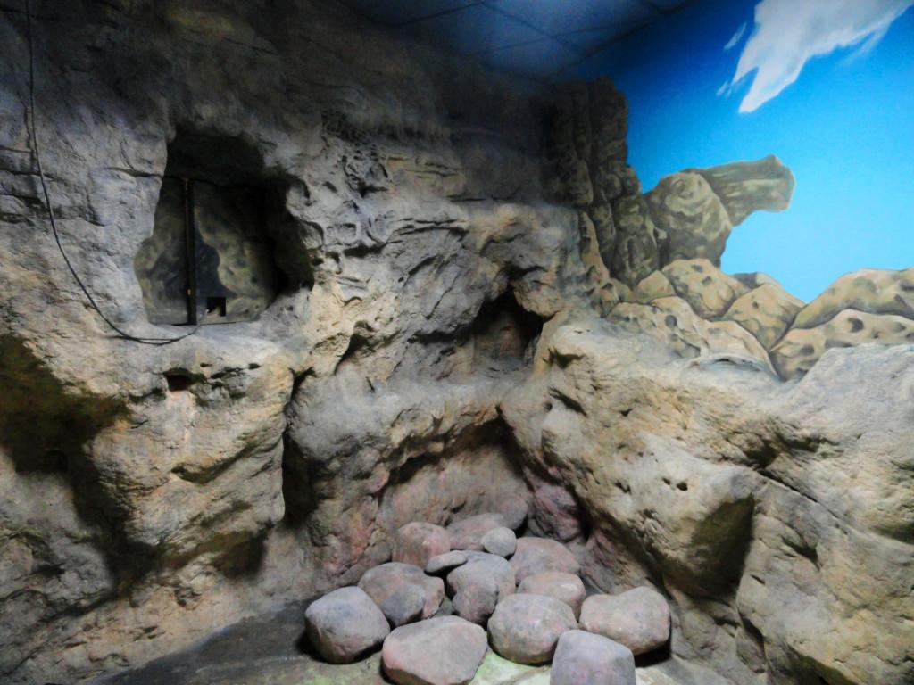 roca para acuario
